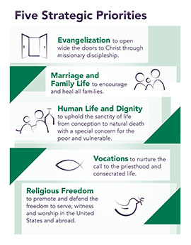 usccb priorities 2017-2020