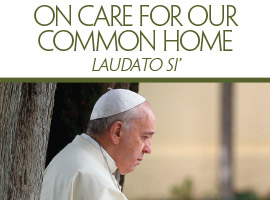 Cover image for Pope Francis' encyclical letter