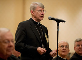 Bishop Daniel Conlon of Joliet asks a question during the November 2012 meeting. CNS Photo/Nancy Phelan Weichec.