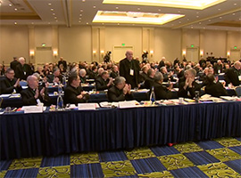 usccb-general-assembly-2019-screenshots-1-montage