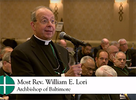 usccb-general-assembly-2019-screenshots-11-montage