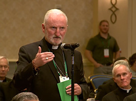usccb-general-assembly-2019-screenshots-12-montage