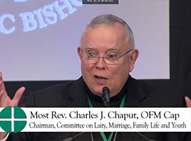 usccb-general-assembly-2019-screenshots-17-montage