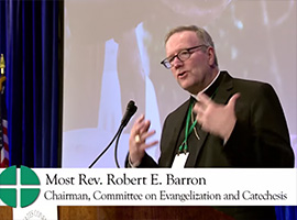 usccb-general-assembly-2019-screenshots-23-montage
