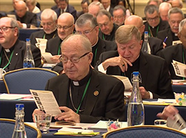 usccb-general-assembly-2019-screenshots-3-montage