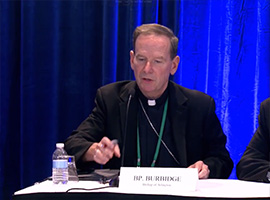 usccb-general-assembly-2019-screenshots-7-montage