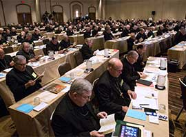 U.S. bishops read from prayer books during their 2015 spring General Assembly in St. Louis. CNS Photo/Lisa Johnston, St. Louis Review