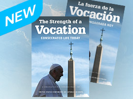 Strength of a Vocation Book Cover
