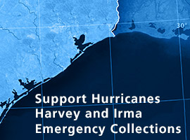 Support the Hurricanes Harvey and Irma Emergency Collections Graphic