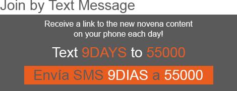 9 days 2015 text