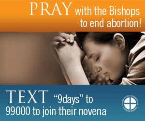 Join in nine days of prayer, pilgrimage and penance.