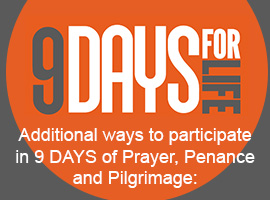 9 Days for Life: Prayer, Penance, and Pilgrimage