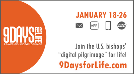 9 Days for Life Display Screen Ad