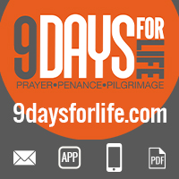 9 Days for Life Image Gallery