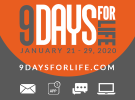 9 Days for Life Logo 2020 Montage
