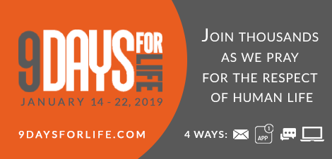 9 Days for Life Banner