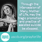 Pray for Life 2017 Image 150
