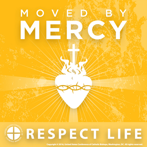 Respect Life Profile Picture: Moved by Mercy