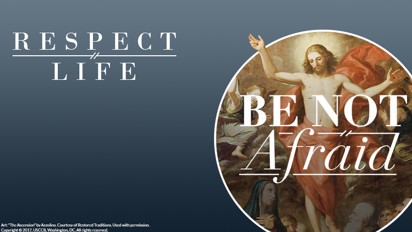 Respect Life Cover Photo: Be Not Afraid