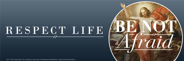 Respect Life Email Banner: Be Not Afraid