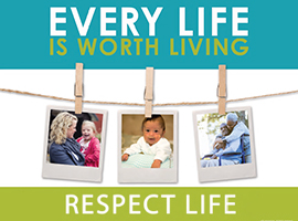 Order Today! 2015-16 Respect Life Program Materials