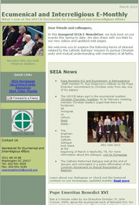 seia-newsletter-screehshot-2013-03