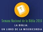 national bible week spanish montage thumb
