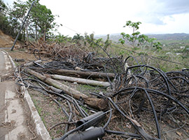 Downed power lines in Puerto Rico (CNS photo/Bob Roller)