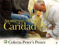 Support the Peter's Pence Collection - Poster Spanish