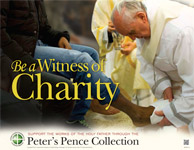 Support the Peter's Pence Collection - Poster