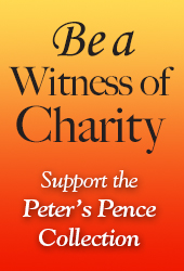 Peter's Pence Collection Web Ad 170x250