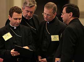 Bishops read from an iPad during the 2014 USCCB spring meeting in New Orleans. CNS Photo/Bob Roller