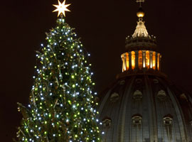 The Christmas tree in St. Peter's square in 2011.  CNS Photo/Paul Haring