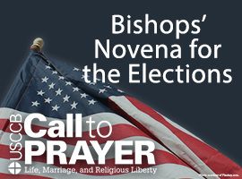 Novena for the National Elections graphic.