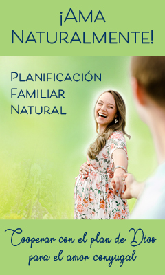 NFP 2019 Web Banner 240x400 in Spanish
