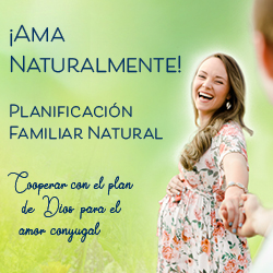 NFP 2019 Web Banner 250x250 in Spanish