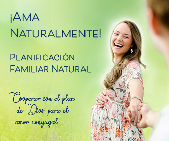 NFP 2019 Web Banner 336x280 in Spanish