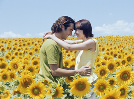 couple-kissing-in-sunflower-field-montage
