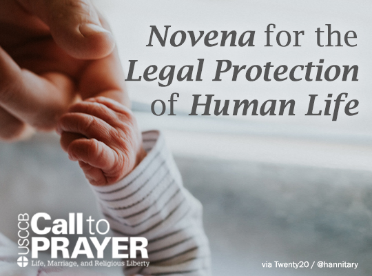 Call to Prayer - Novena for the Legal Protection of Human Life Montage Image