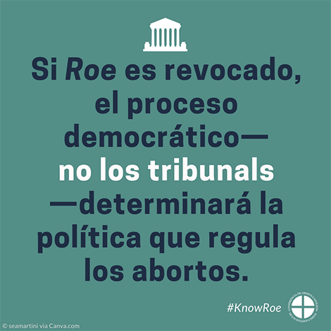 #KnowRoe Image 2 - Spanish - 470