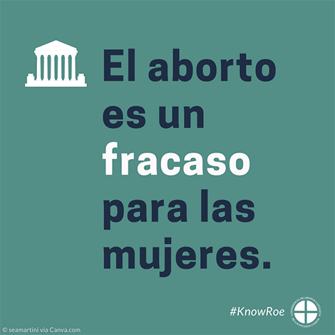 #KnowRoe Image 7 - Spanish - 470