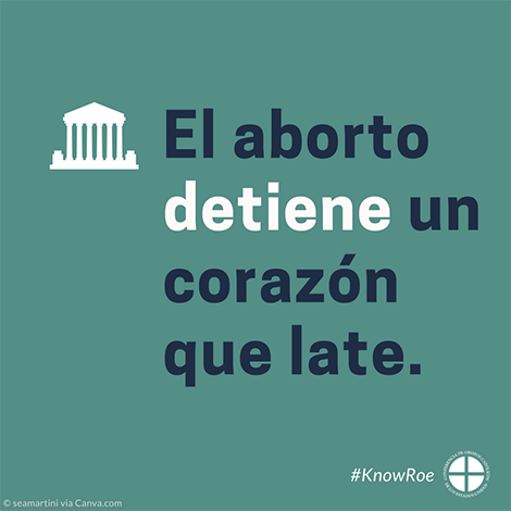 #KnowRoe Image 8 - Spanish - 470