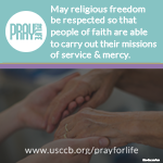 Pray for Life - www.usccb.org/prayforlife