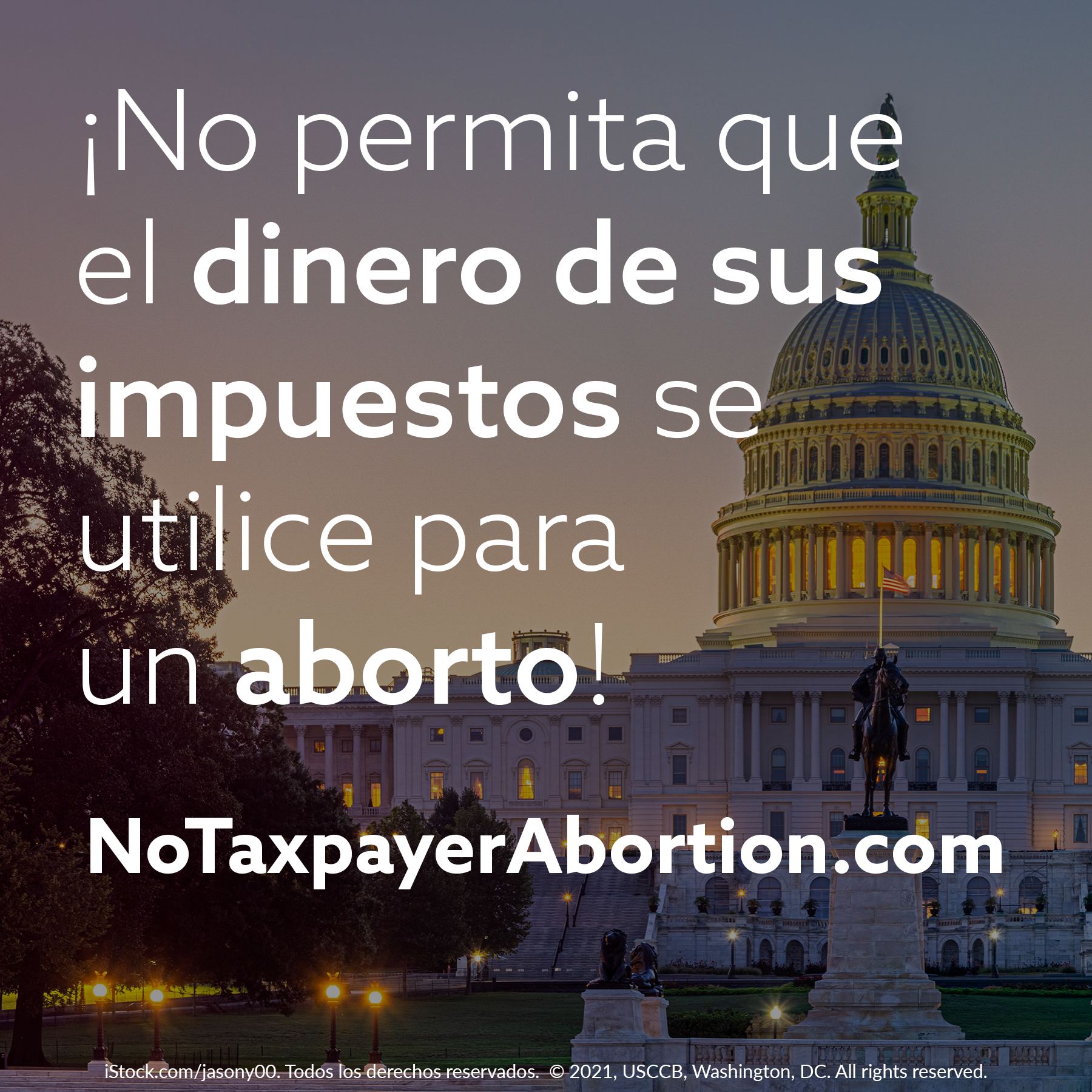 no-taxpayer-abortion-8-spn.png