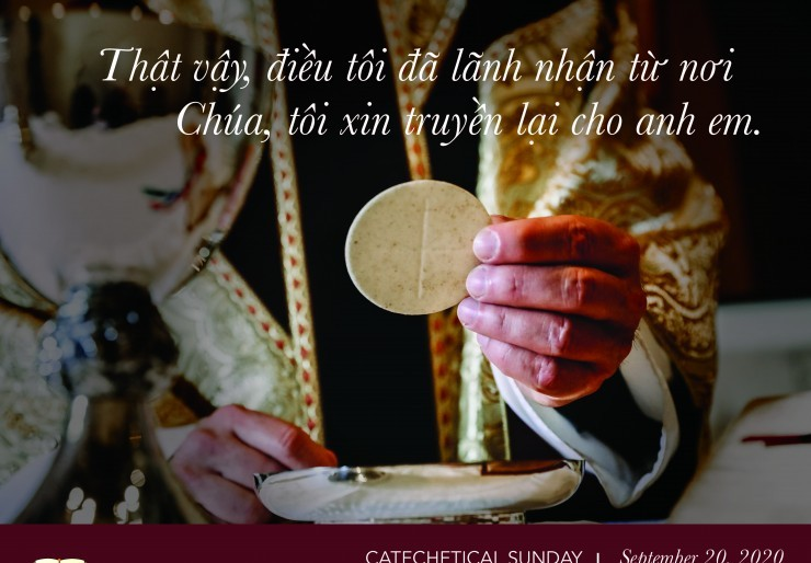 Catechetical Sunday Cover Image 2020 - Vietnamese