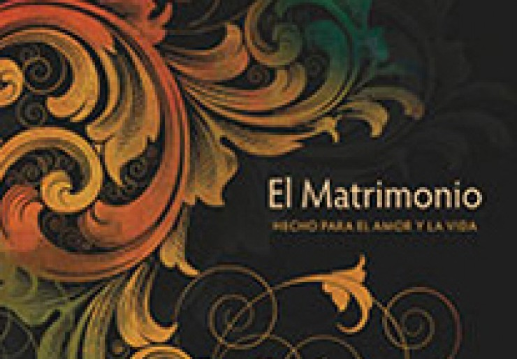 El Matrimonio: Hecho para el amor y la vida (Marriage: love and life study guide)